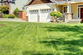 Douglasville home with a professionally mowed and maintained lawn.